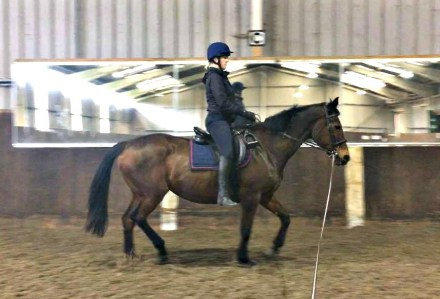 The dreaded rising trot without stirrups - why do it and how it can help you with your riding skills