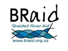 Braid logo NZ