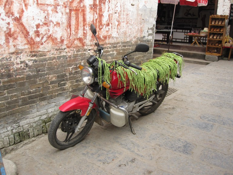 Motorcycle covered in yard long beans