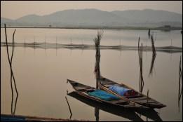 Morning  awaiting their routine at Chilka Lake