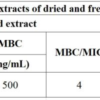 https://i2.wp.com/asploro.com/wp-content/uploads/2019/12/Table-3_MIC-and-MBC-of-extracts-of-dried-and-fresh-herbal-plants-P.-amarus.jpg?resize=200%2C200&ssl=1