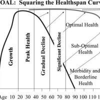 https://i2.wp.com/asploro.com/wp-content/uploads/2020/03/The-Healthspan-Curve.jpg?resize=200%2C200&ssl=1