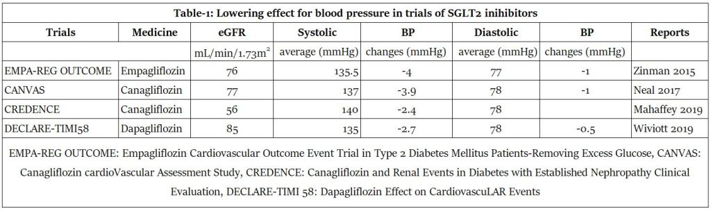 Possible Sodium-Glucose Cotransporter-2 (SGLT-2) Inhibitors for Reducing Effects of Blood Glucose and also Blood Pressure