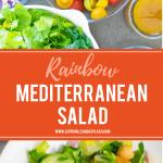 Rainbow Mediterranean Salad Pin Image