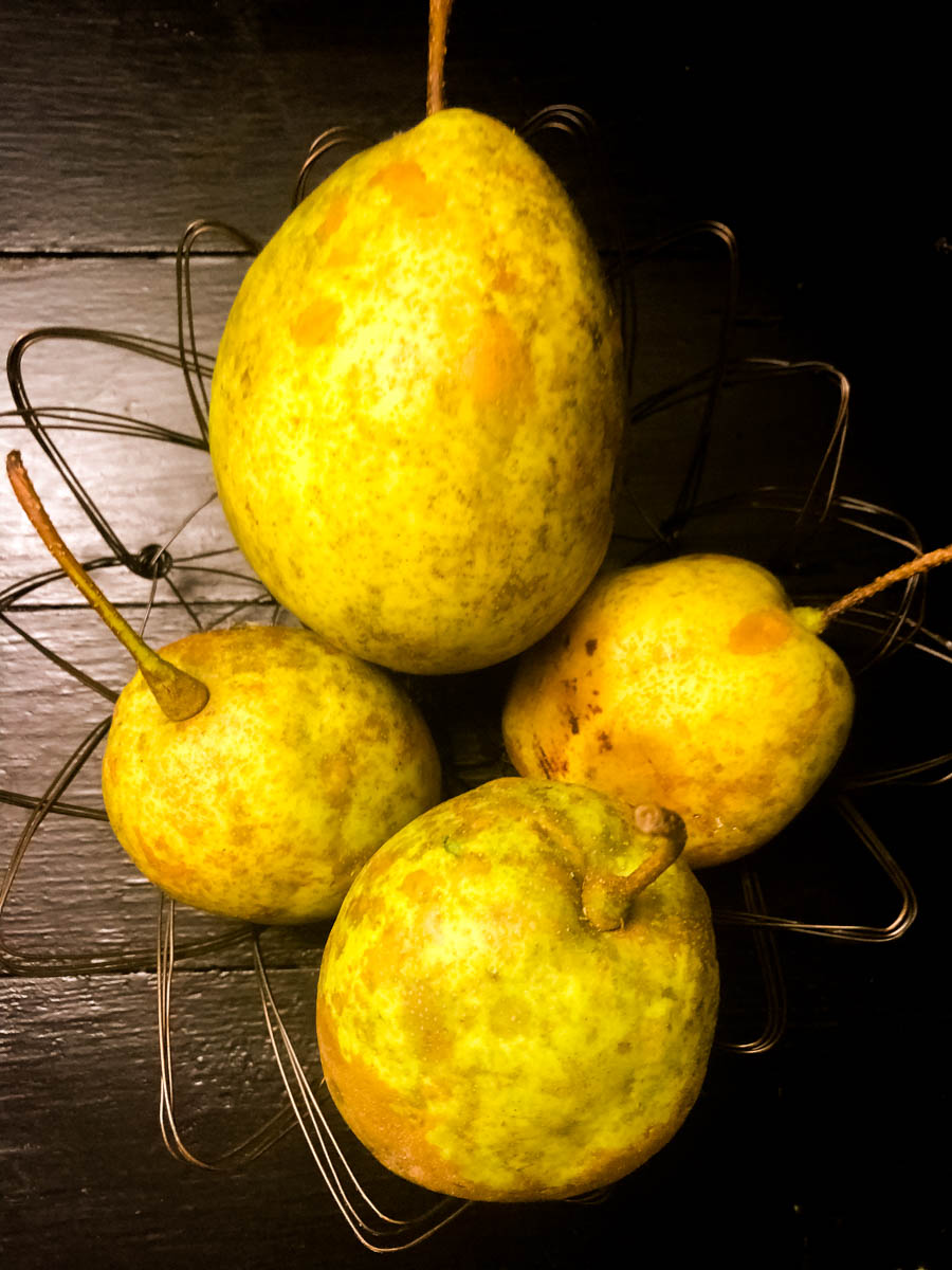 Homegrown pears fresh off of the vine in a wire basket against a black background.
