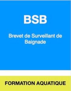 Brevet de Surveillant de baignade (SB), Valence, Drôme.