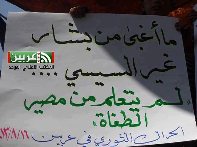 السيسي وبشار ما الفرق يا حكومة السبيل