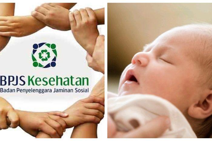 Ini Syarat Dan Cara Daftarakan Bpjs Kesehatan Untuk Bayi Baru Lahir