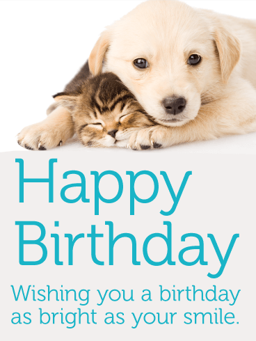 Adorable Cat Dog Happy Birthday Card For Kids Birthday Greeting Cards By Davia