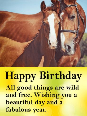 Beautiful Horses Happy Birthday Card Birthday Greeting Cards By Davia