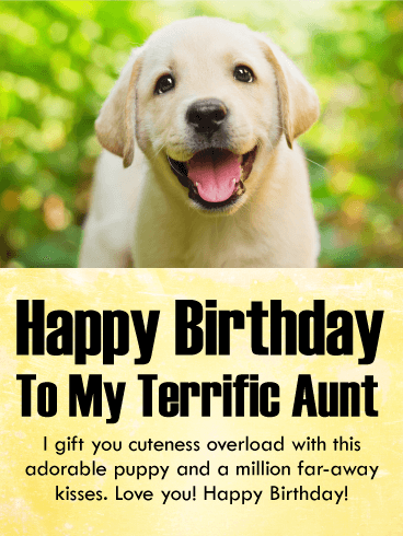 I Gift You Cuteness Happy Birthday Card For Aunt Birthday Greeting Cards By Davia