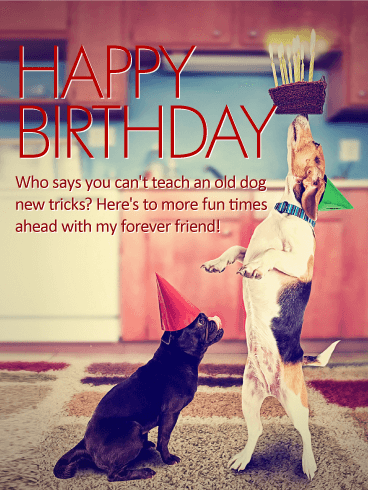 To My Forever Friend Happy Birthday Card Birthday Greeting Cards By Davia
