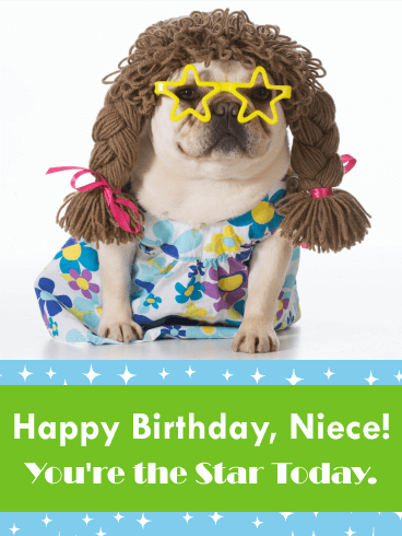 You Re The Star Today Funny Birthday Card For Niece Birthday Greeting Cards By Davia