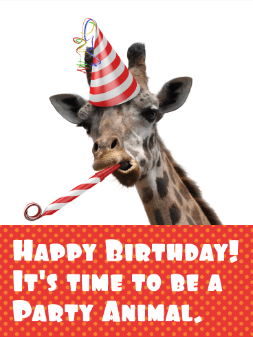 Time To Be A Party Animal Funny Birthday Card Birthday Greeting Cards By Davia