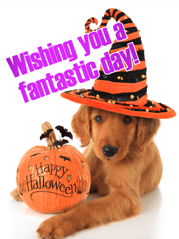 Have A Fantastic Day Happy Halloween Card Birthday