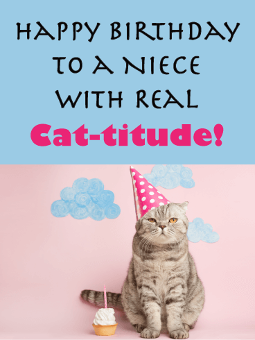 Real Cat Titude Happy Birthday Card For Niece Birthday Greeting Cards By Davia