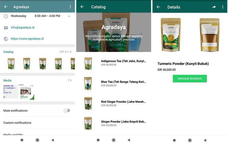 Bidikan layar fitur Katalog di WhatsApp Business.