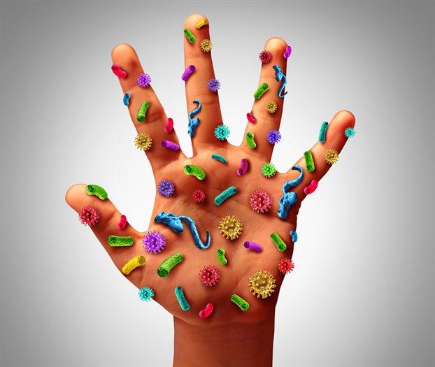 Βακτήρια: Φίλοι, εχθροί και συνεργάτες