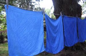 indigo-cloth-drying-300x196.jpg