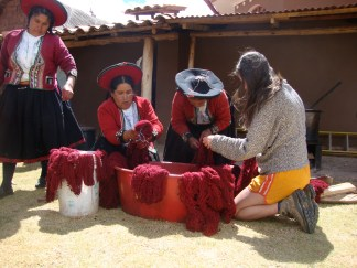 Washing and rinsing the cochineal-dyed yarn