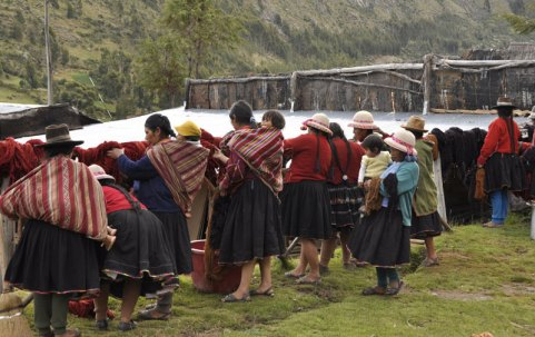 The abundance of cochineal red is apparent in the Acopia weavings and yarn