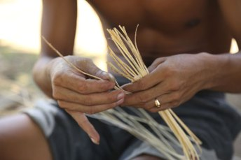 The rattan stems are split into several thinner ones for weaving.