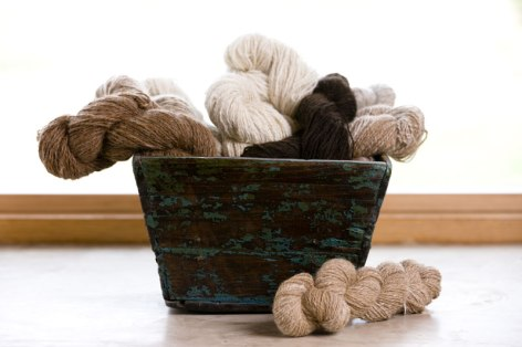 Handspun alpaca yarn in natural colorings.