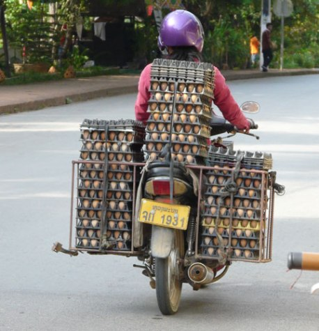 Egg delivery in Laos