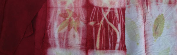 These fabrics were dyed in cochineal by Judy Newland using eco-dye techniques.