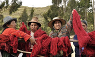 The women of Acopia, Peru with their natural dye skeins of cochineal red.