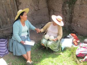 Doñas Máxima and Beatris, Measuring Day in Sanipaya, 2014