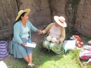 Doñas Máxima and Beatris, Measuring Day in Sanipaya, 2014
