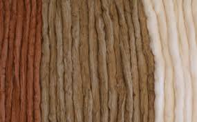 Organic cotton sliver, ready for spinning. Photo credit: Sally Fox.