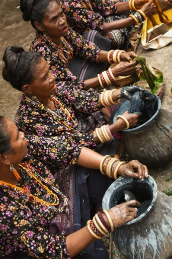 The women of the Dokar village of Maumere in east Flores demonstrating their indigo dye process.