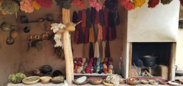 The natural dye display at Center for Traditional Textiles of Cusco in Chinchero.