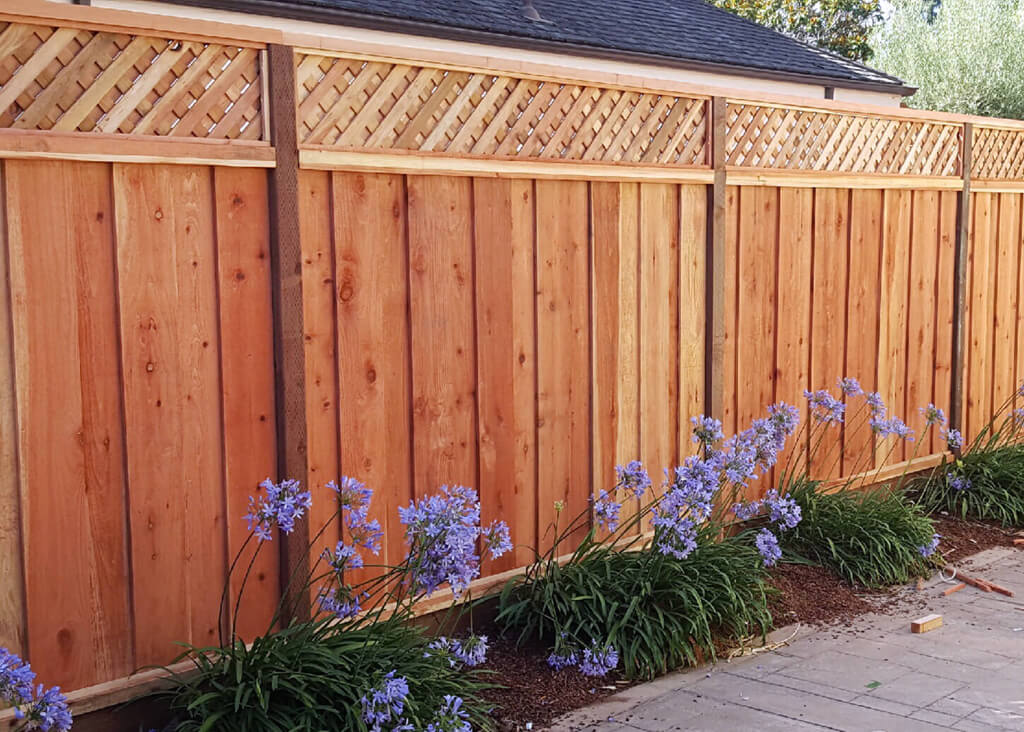 How To Choose The Best Type Of Wood For Your Fence