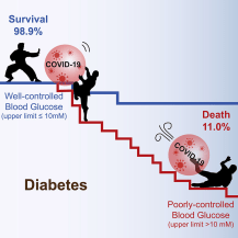 Glucose Control Impacts Outcomes from COVID-19 Infection in Patients with Pre-Existing Diabetes
