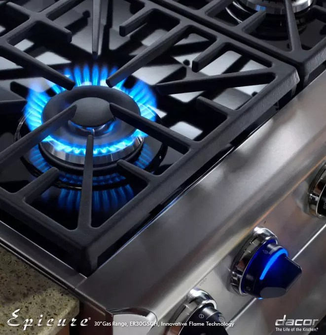 Dacor Discovery 6 Burner Self Cleaning Convection Single Oven Dual Fuel Range Stainless