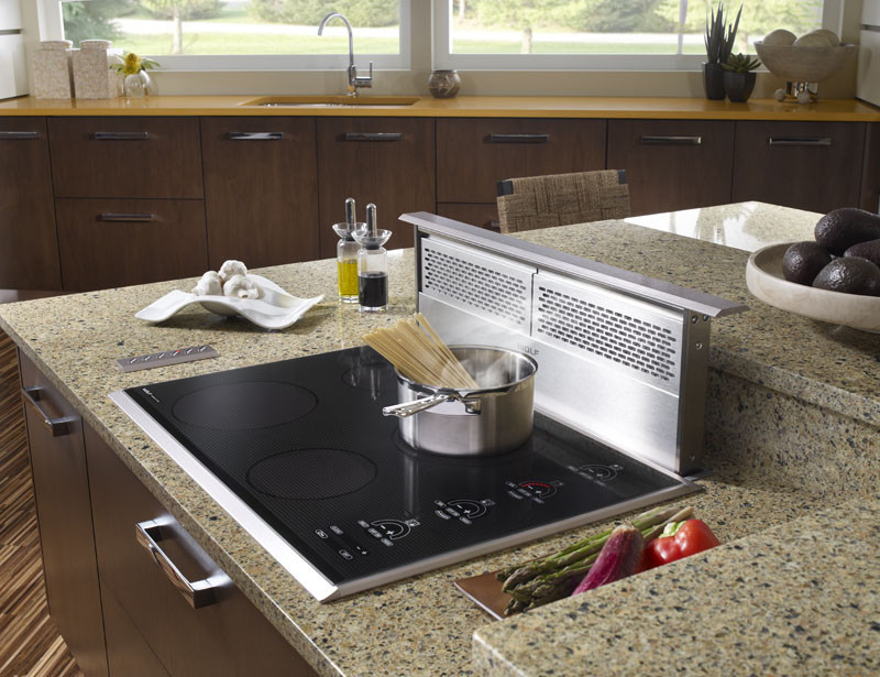 Wolf DD30 30 Inch Downdraft Ventilation System With 3 Speed Blower Control Automatic Delay Off