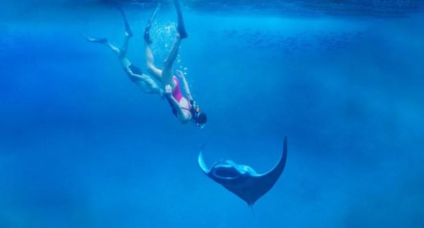 Image of resort, Bocas Islands cruise best water fun
