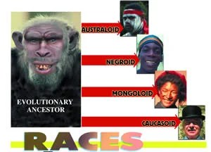 The evolutionary view of races