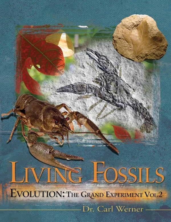 Living Fossils Answers In Genesis