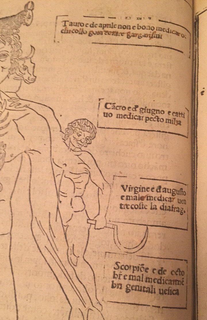 Détail de Zodiac Man, 1522
