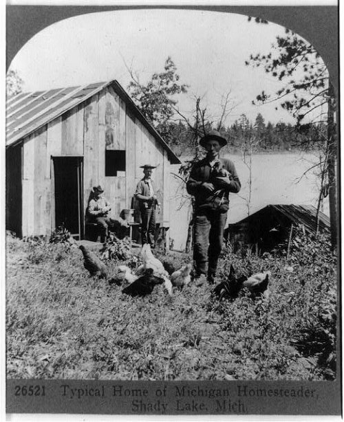 One side of a stereograph image shows homesteaders in Michigan.
