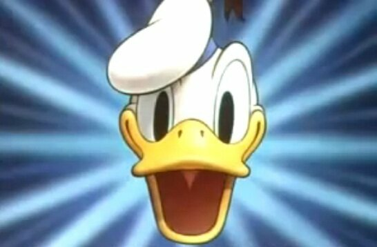 Donald Duck is (inexplicably? unsurprisingly?) the most popular Disney character in Sweden.