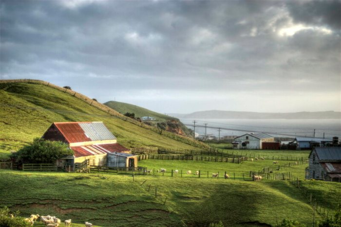 """A present-day view of the Chatham Islands gives a clue to the island's traditional name, meaning """"Misty Sun."""""""