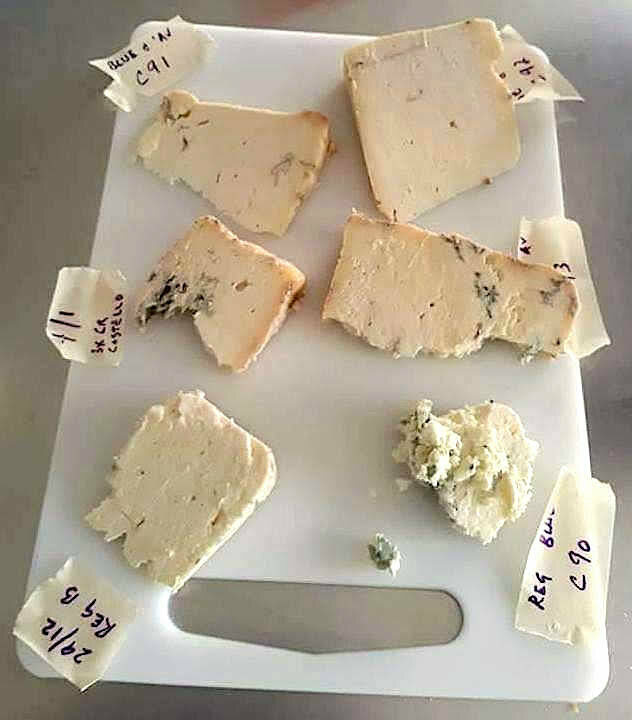 A taste-test of various LBD blue cheese varieties.