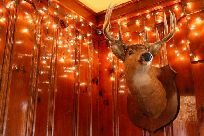 The supper-club decor trifecta: taxidermy, twinkly lights, and dark wood.