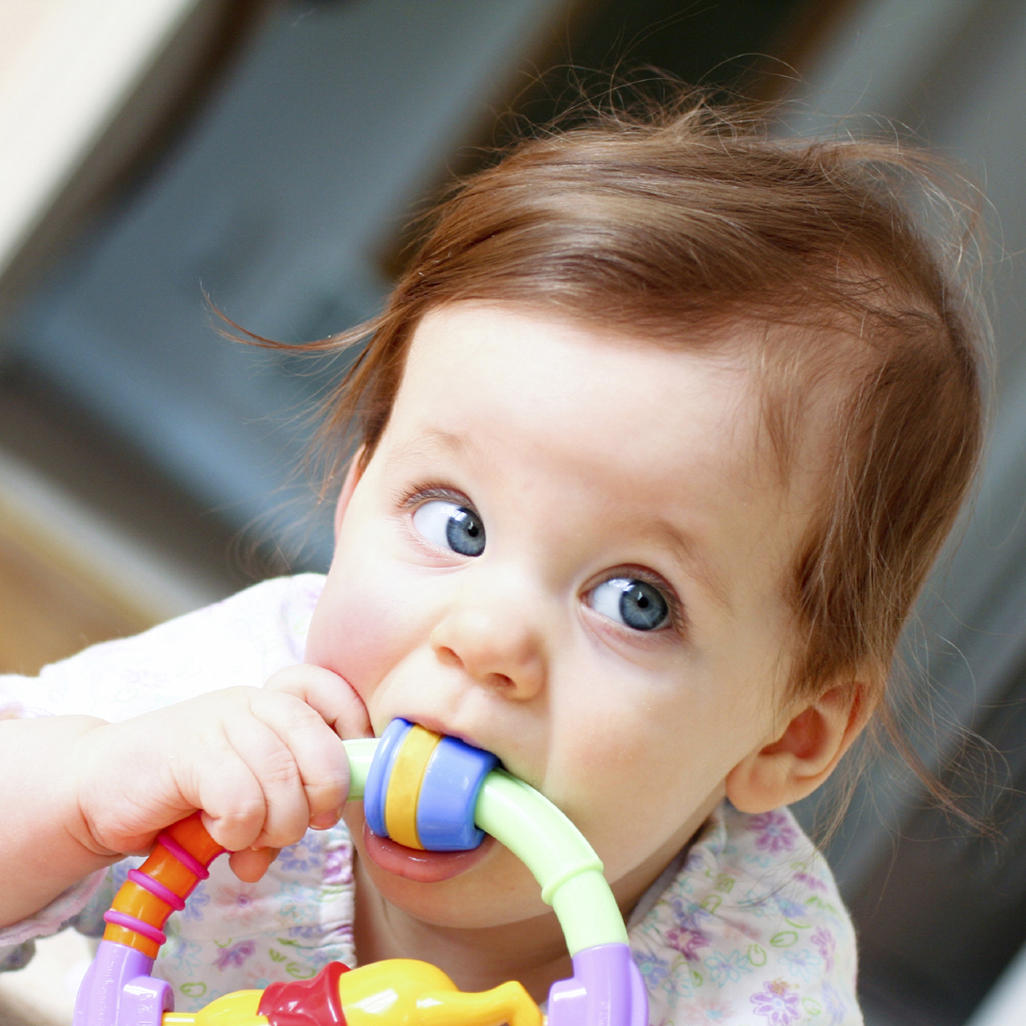 Teething Your Baby S First Teeth