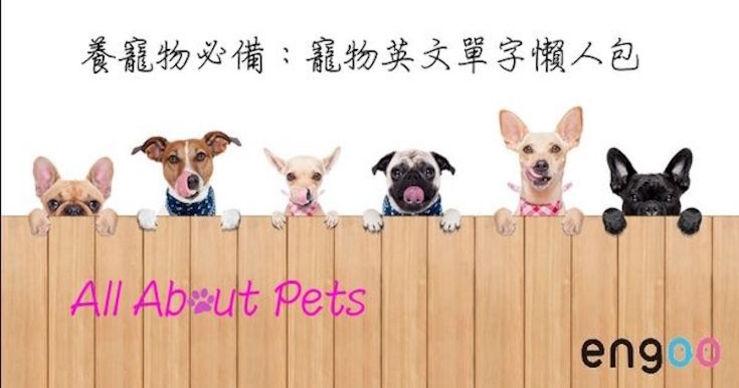 【主題單字】養寵物必備:寵物英文單字懶人包 All About Pets - Engoo線上英文家教-部落格